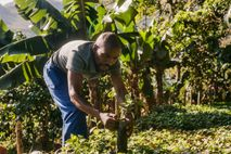 Zachariah Mukwinya, a farmer from Chavhanga village in Mutasa district, has seen a big change in ...