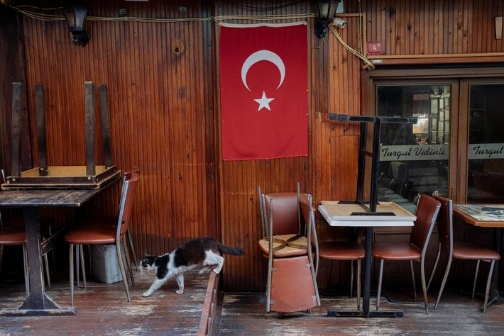 Istanbul's usually full restaurants and cafes have been closed for in-person dining since March 23. Only ...