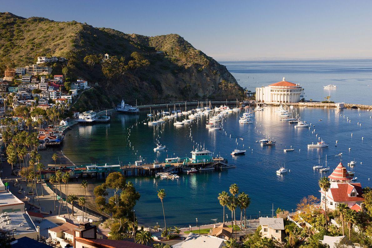Catalina Island, United States