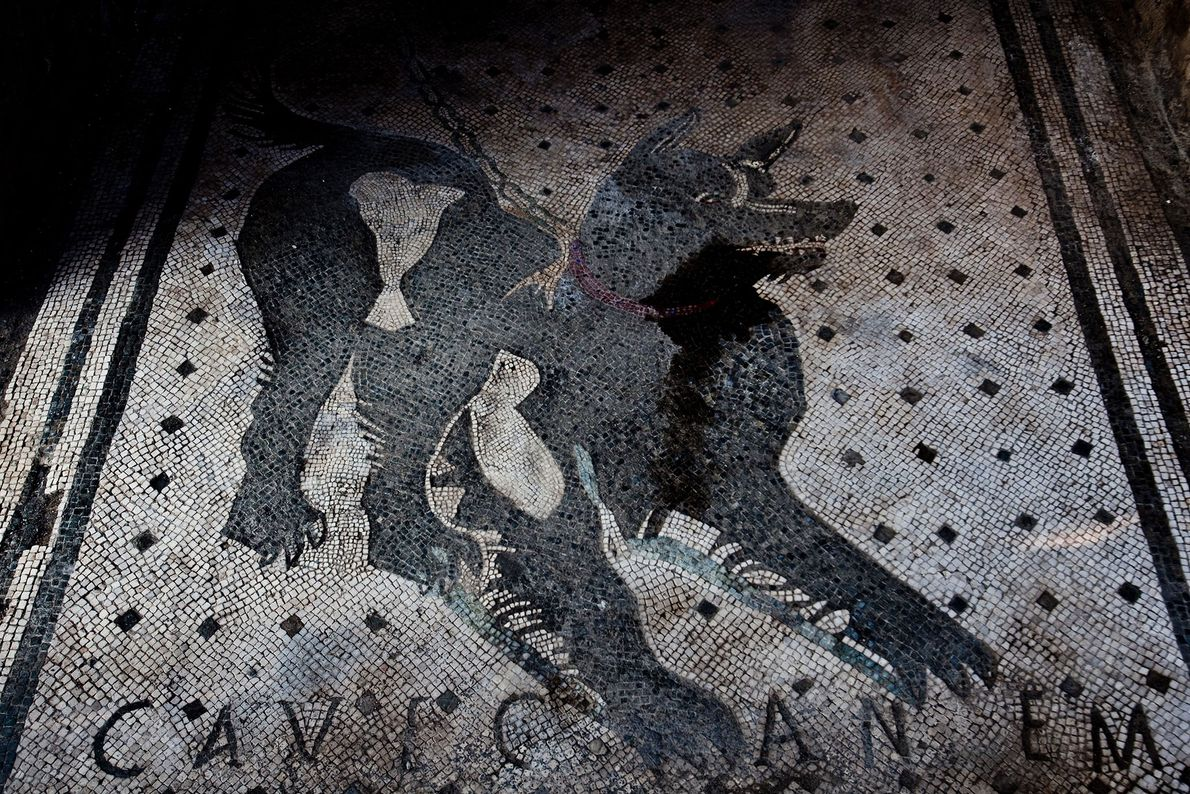 "This famous mosaic in the entrance to a Pompeii house reads ""Cave Canem""—Latin for ""Beware of ..."