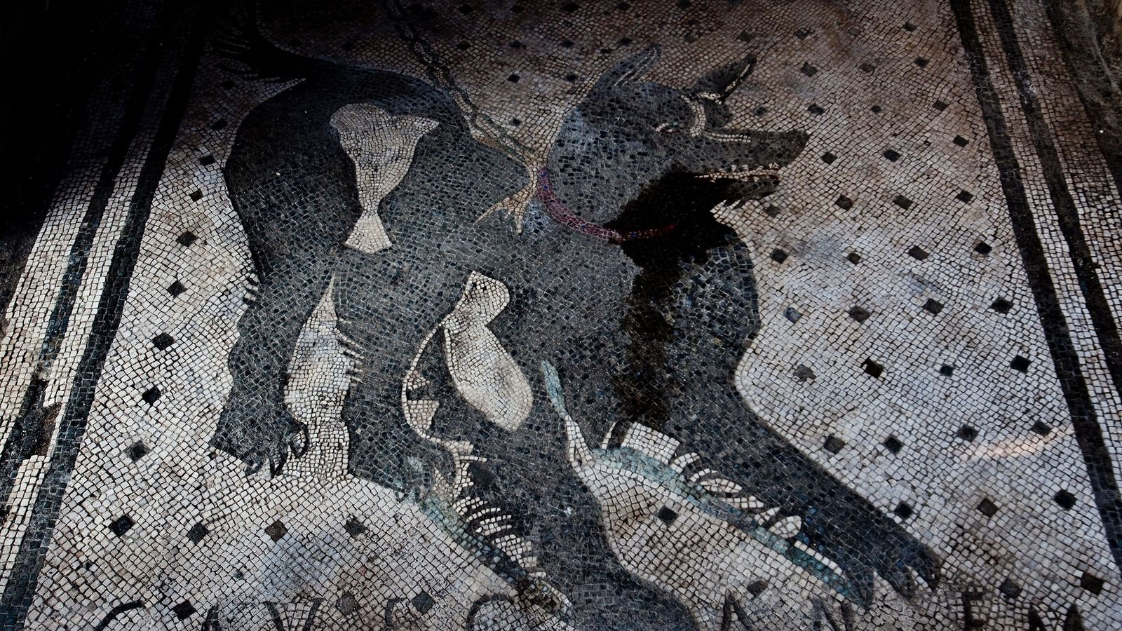 """This famous mosaic in the entrance to a Pompeii house reads """"Cave Canem""""—Latin for """"Beware of ..."""