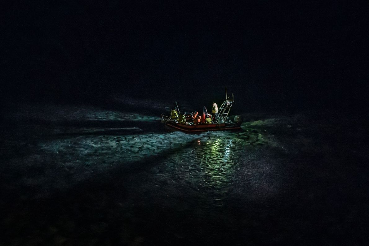 As the Arctic warms, light pollution may pose a new threat to marine life
