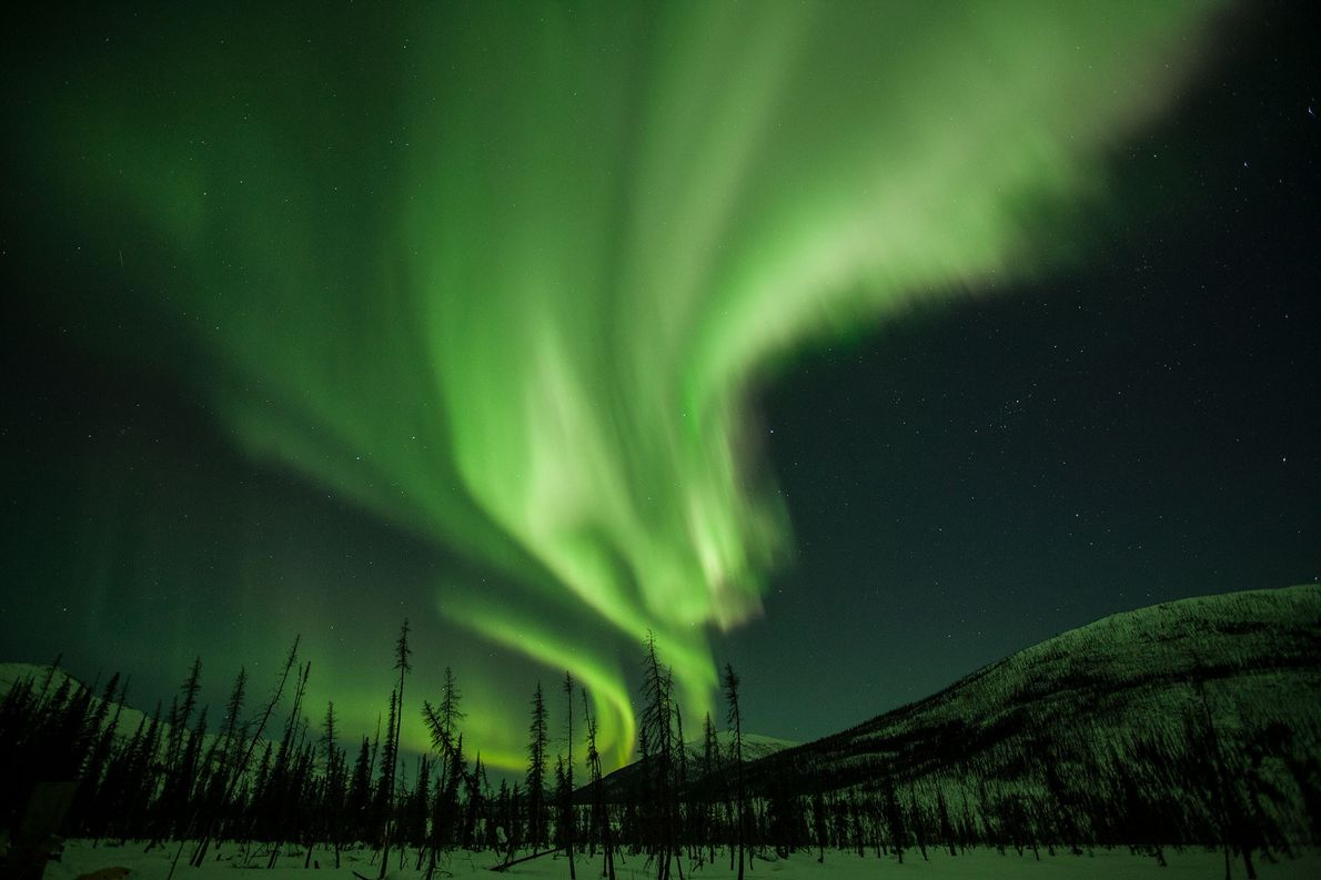 Shimmering curtains of light adorn the night sky over Alaska. Known as the aurora borealis, or ...