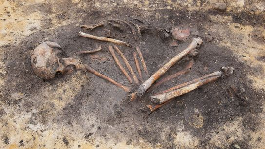 While archaeologists see the beginnings of social inequality in 'have' and 'have not' Bronze Age burials, ...