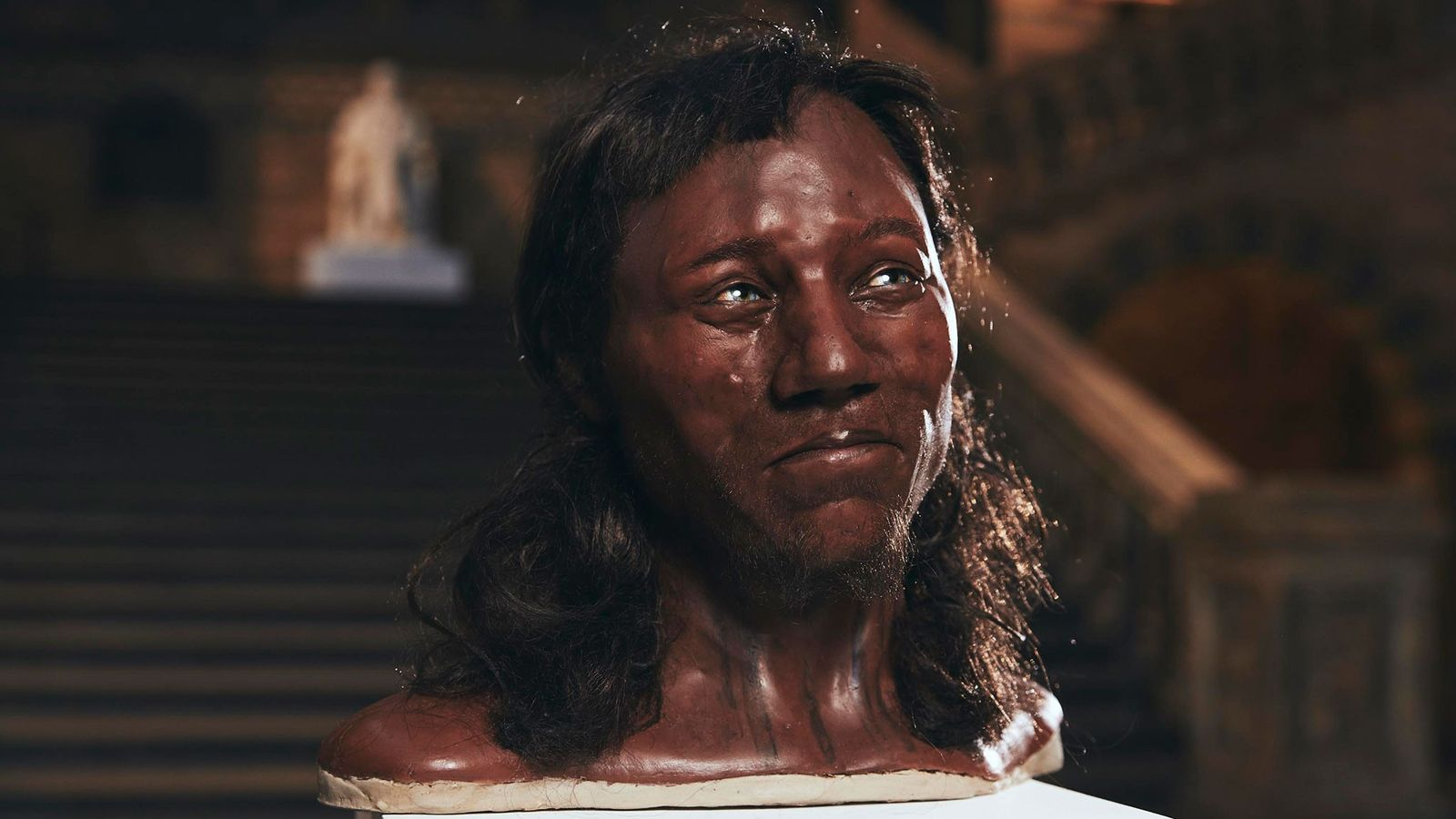 By sequencing the ancient DNA, scientists were able to create skin colour, eye colour, and hair ...