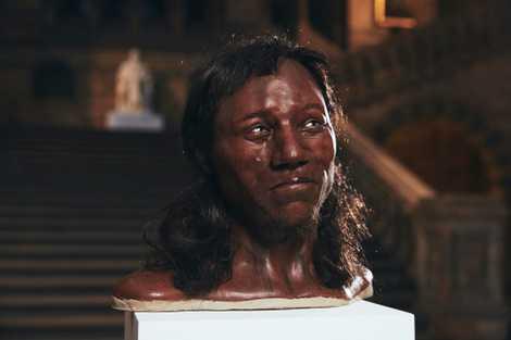 Britain's Dark-Skinned, Blue-Eyed Ancestor Explained | National