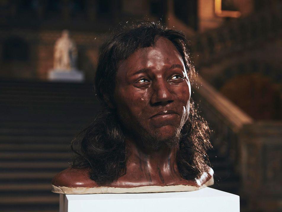 Britain's Dark-Skinned, Blue-Eyed Ancestor Explained