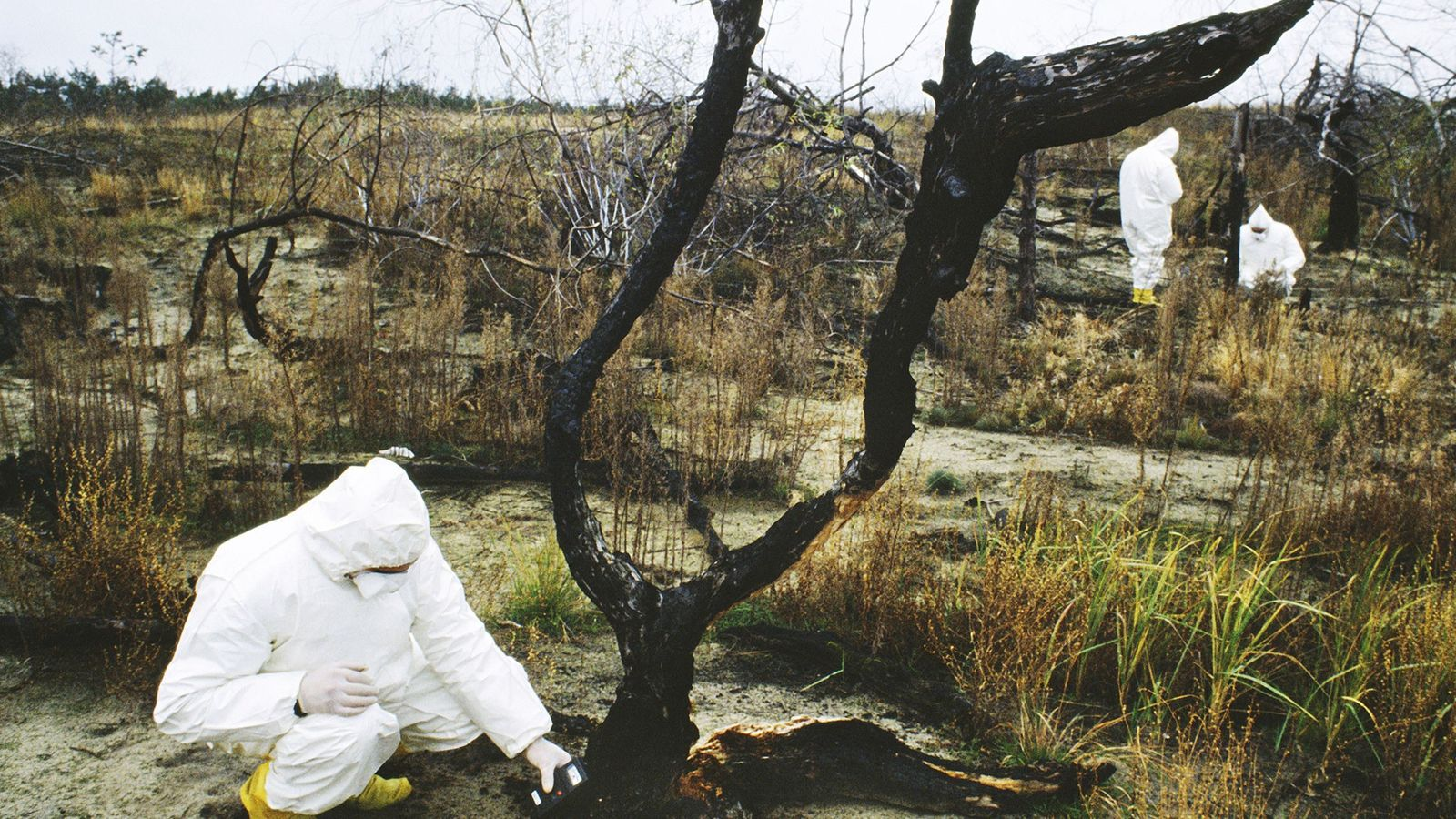 The cleanup of the area surrounding the Chernobyl nuclear disaster is expected to continue for decades, ...