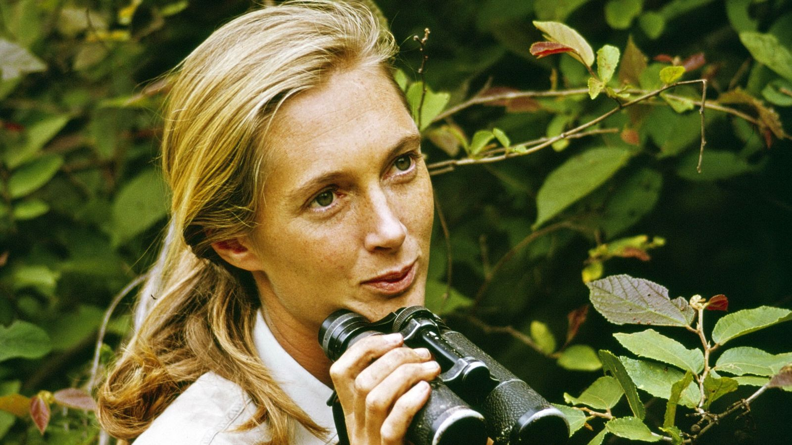 KIGOMA - DECEMBER 22: Jane Goodall appears in the television special 'Miss Goodall and the World ...