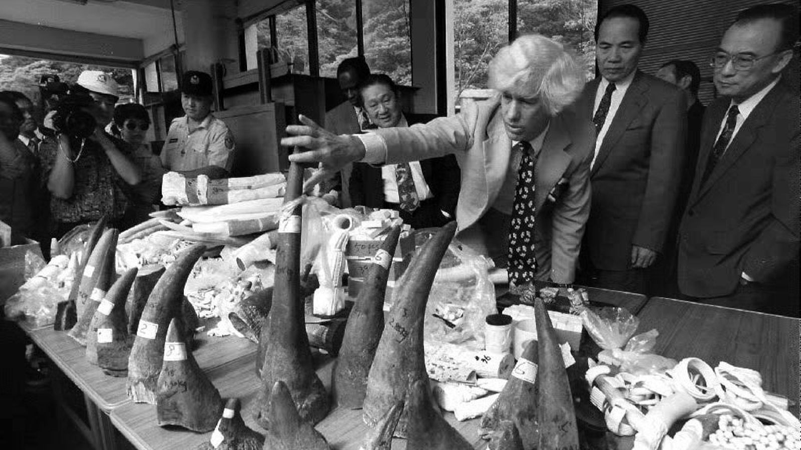 Esmond Bradley Martin inspects confiscated rhino horns and ivory at China's Taipei Zoo in 2004 as ...