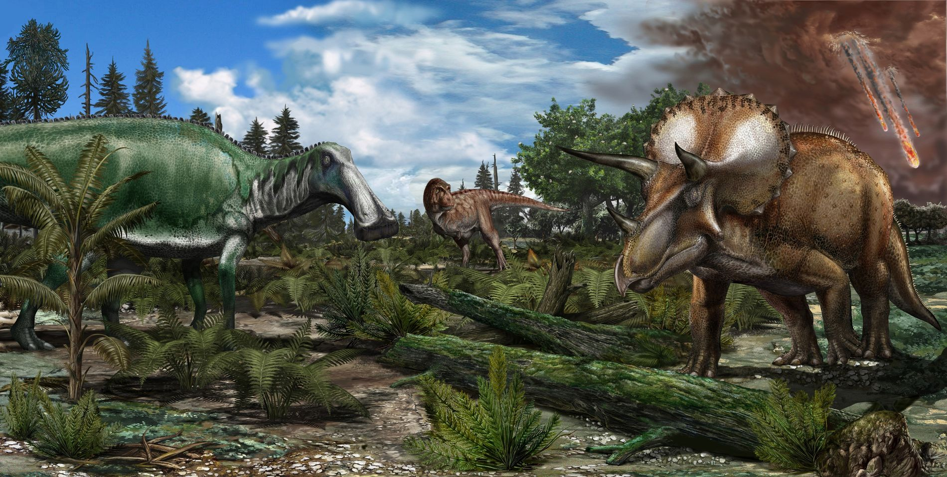 Reconstruction of a floodplain in North America from about 66 million years ago, where dinosaurs such ...