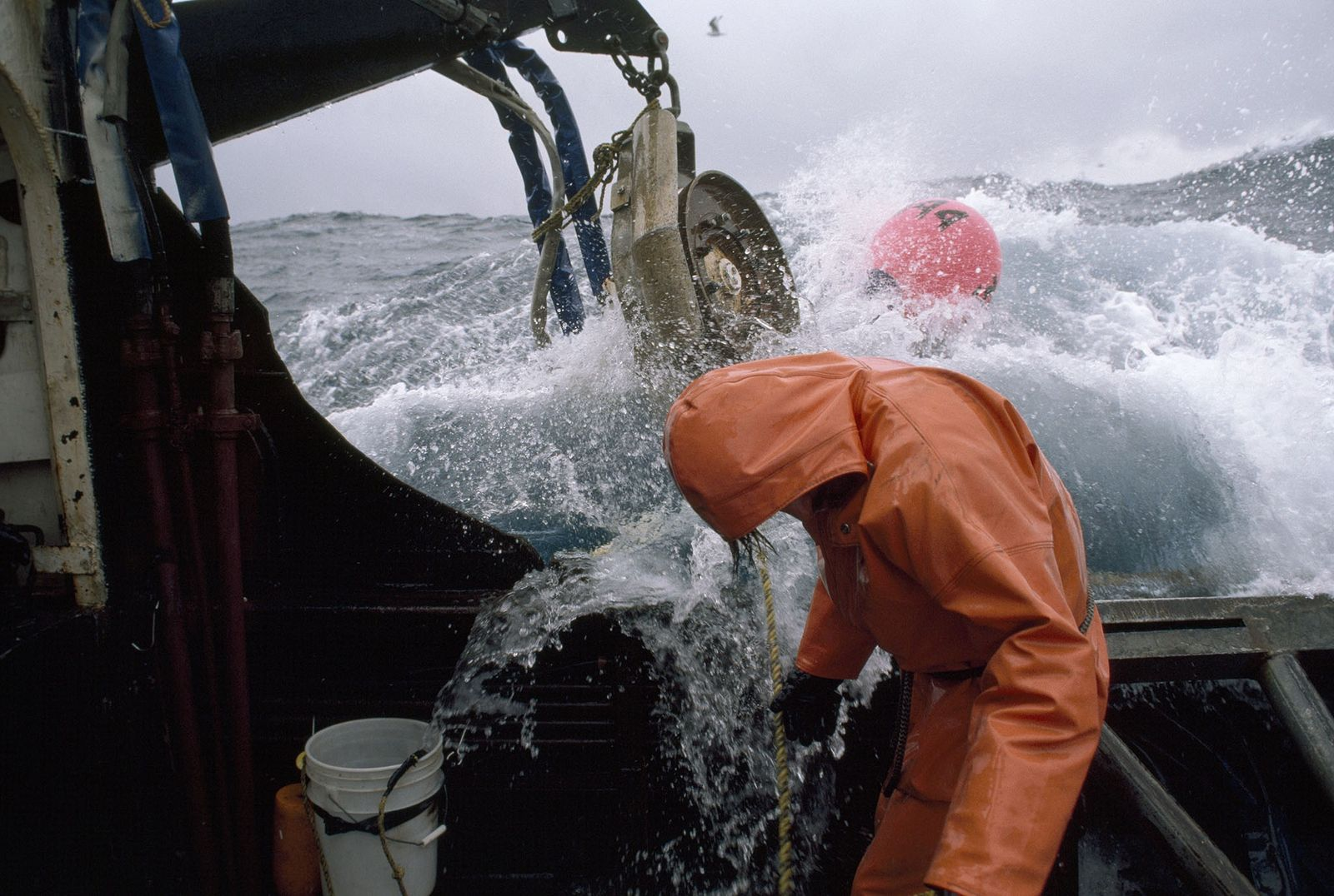 High Seas Fishing Isn't Just Destructive—It's Unprofitable