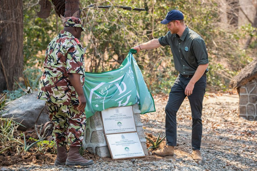 During his royal tour, Prince Harry unveils plaques designating Liwonde National Park and Mangochi Forest Reserve ...