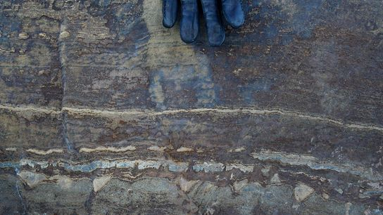 The tiny structures proposed to be formed by ancient microbes can be seen in the bottom ...