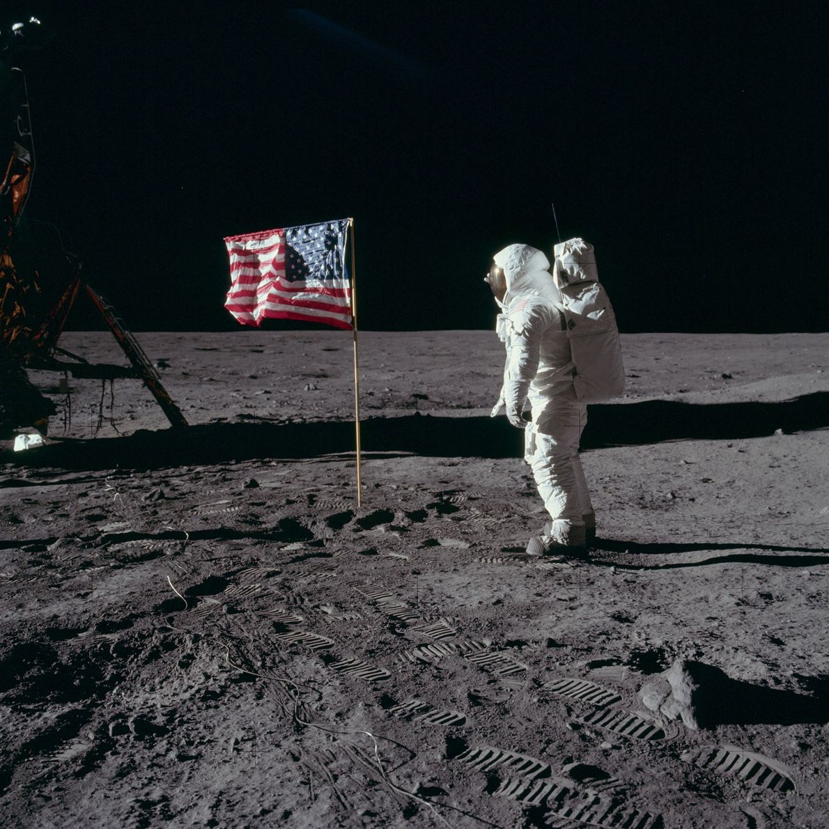 """Apollo 11 astronaut Edwin """"Buzz"""" Aldrin poses with the US flag planted on the Sea of ..."""