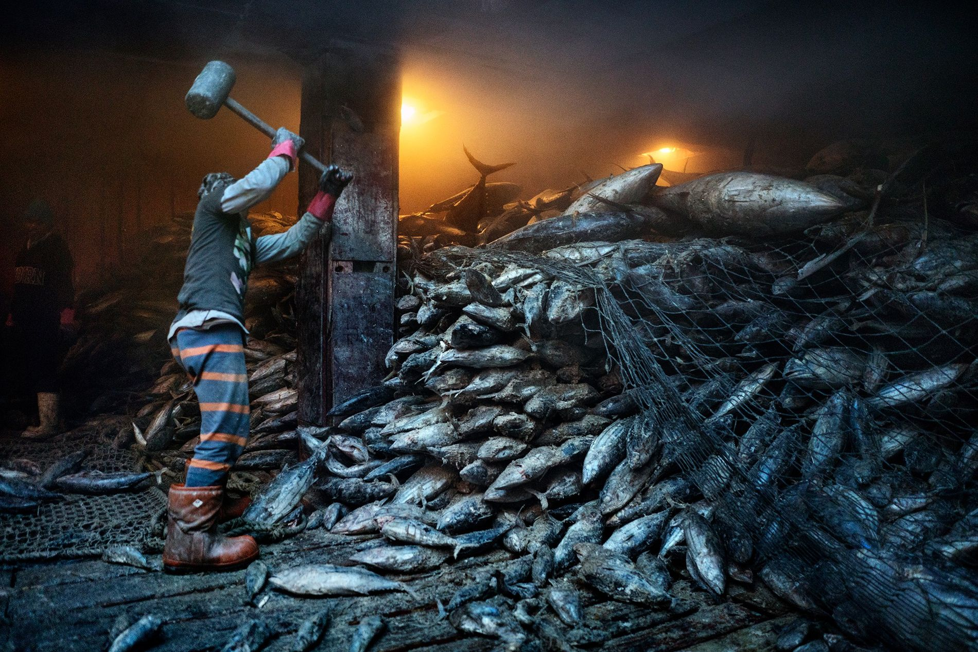 Overfishing is emptying our seas – despite countries' pledges to stop it