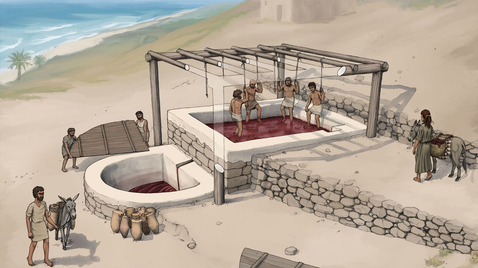 An artist's reconstruction of the wine press at Tell el-Burak, looking from the southeast.