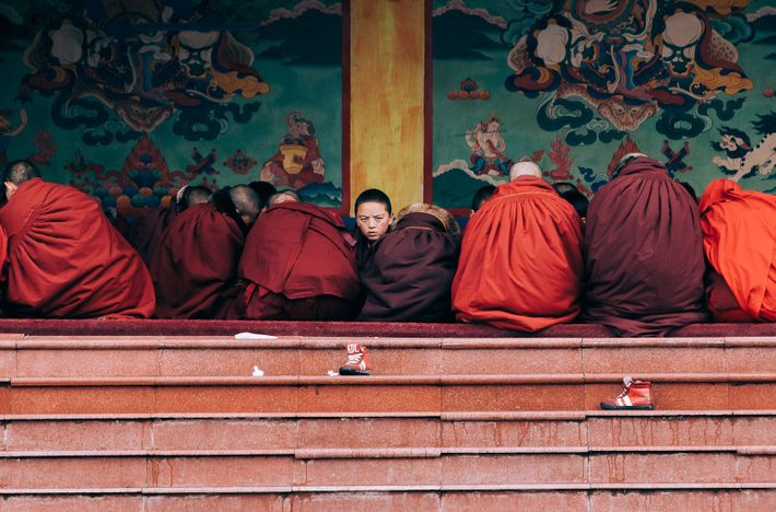 """""""A group of young Buddhist novice monks studying near the main temple, in Sertar, China,"""" writes ..."""
