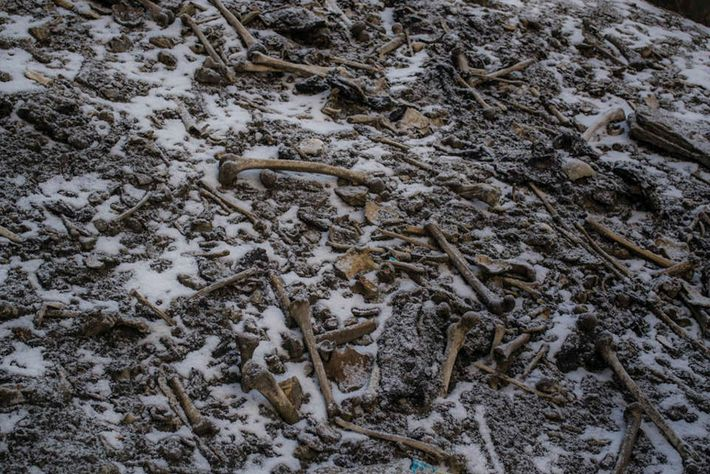 Human bones are scattered across the shores of Roopkund Lake in the Himalayas.
