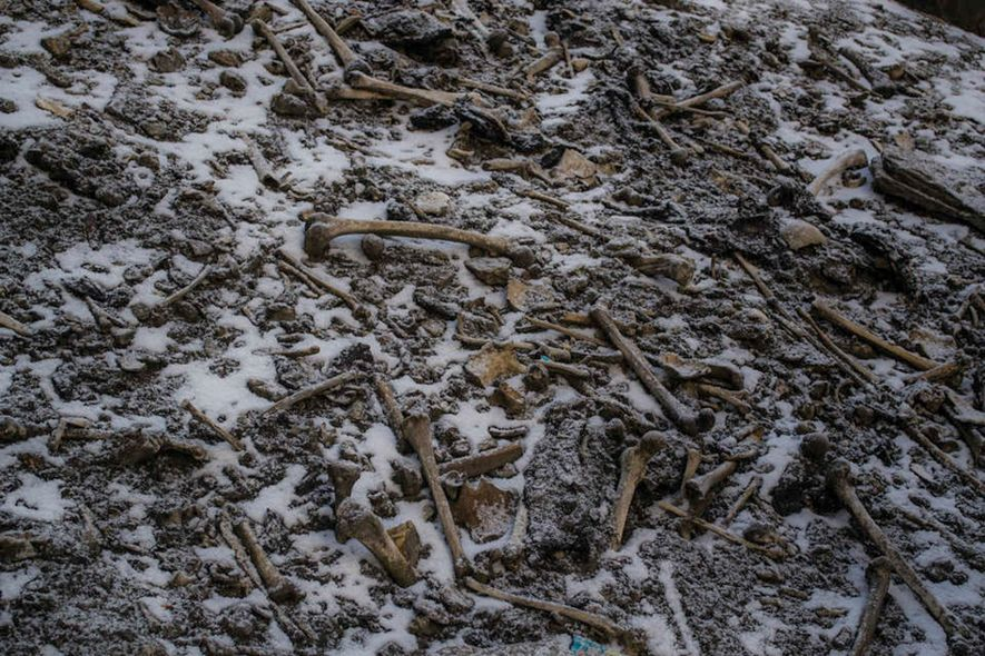DNA study deepens mystery of lake full of skeletons