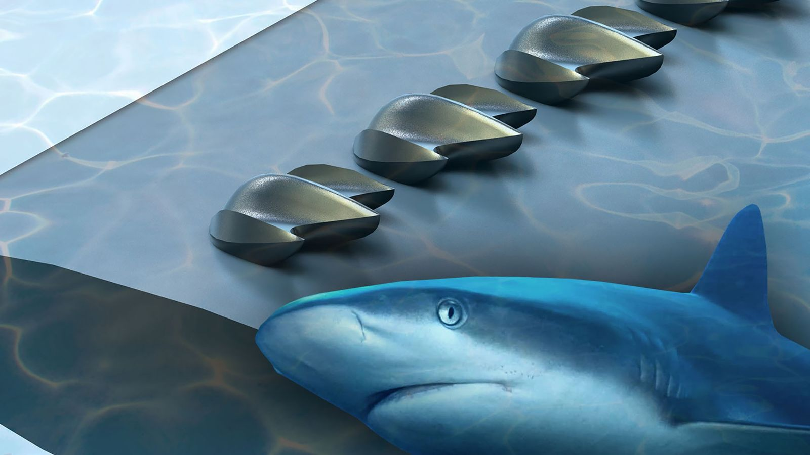 A new structure inspired by shark skin could improve the aerodynamic performance of planes, wind turbines, ...