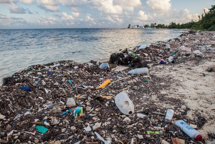 The equivalent of five grocery bags of plastic trash for every foot of coastline spills into ...