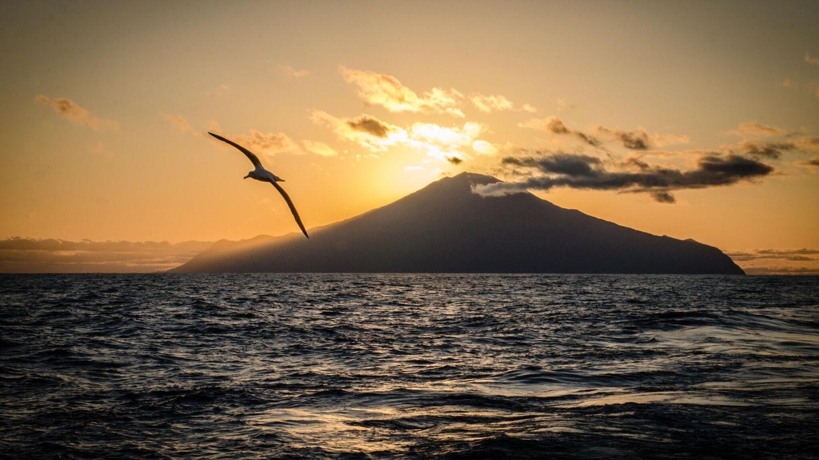 A seabird flies over Tristan da Cunha Island. The region is an important seabird sanctuary and ...