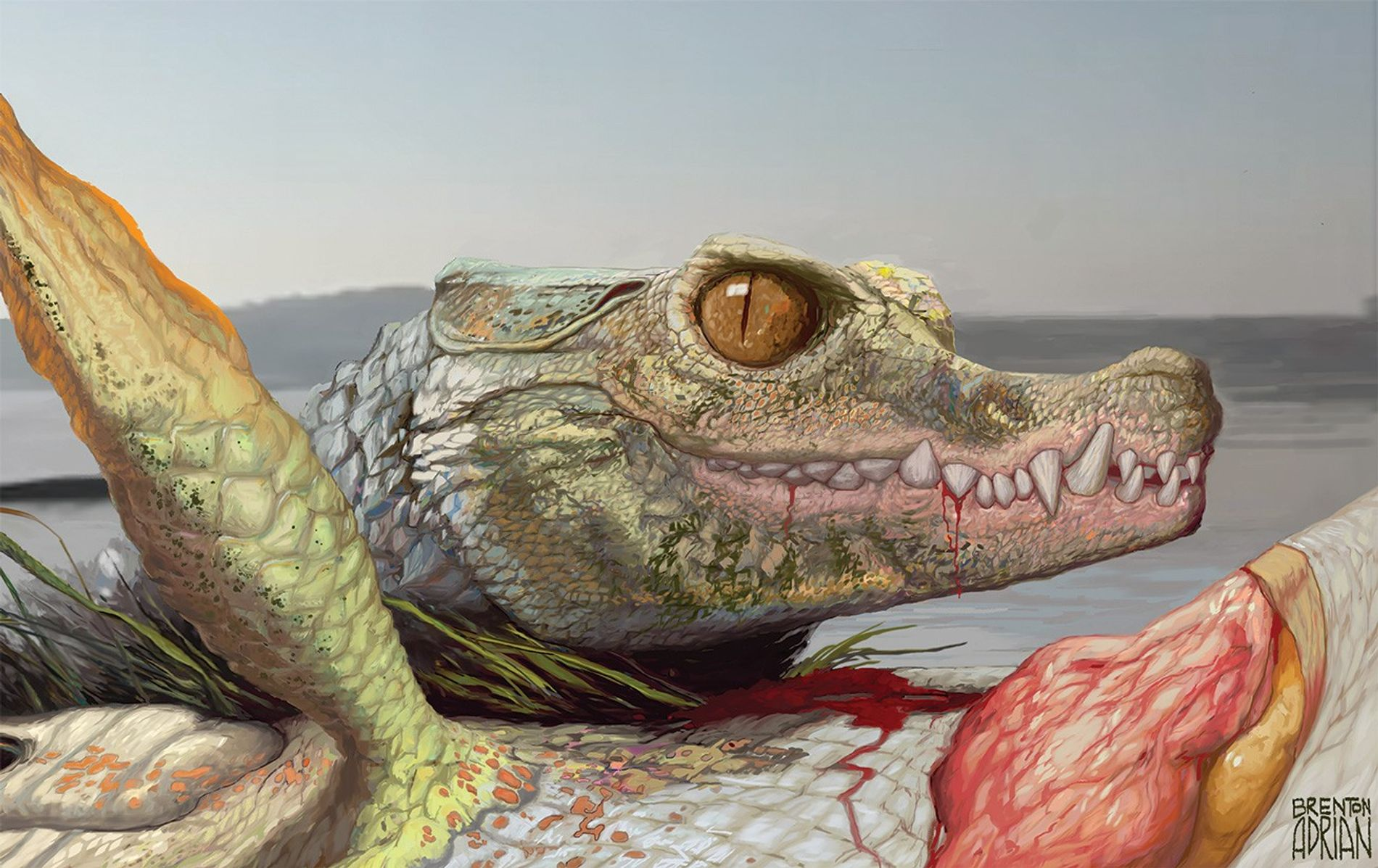 Some 96 million years ago in what is now Arlington, Texas, a smallish relative of modern ...