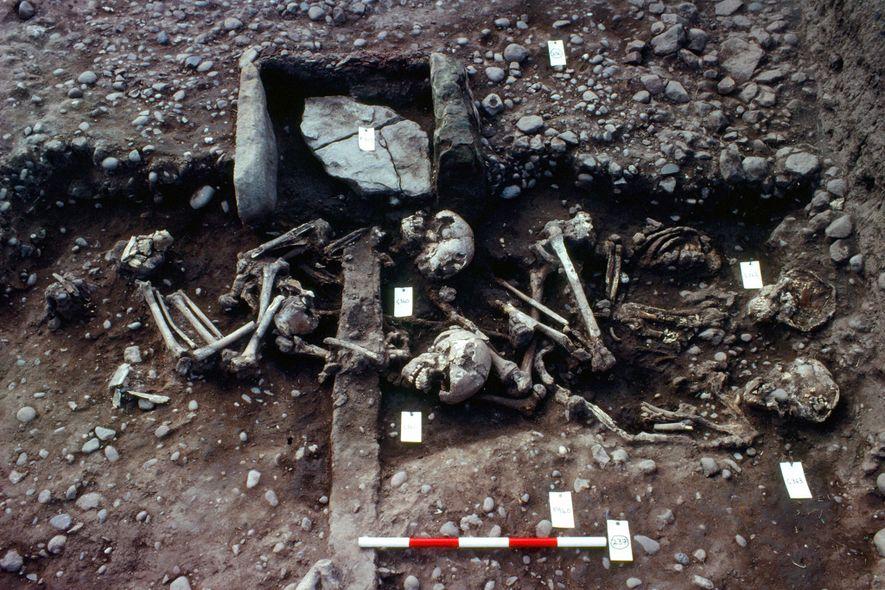 This English Mass Grave May Belong to 'Great Viking Army'