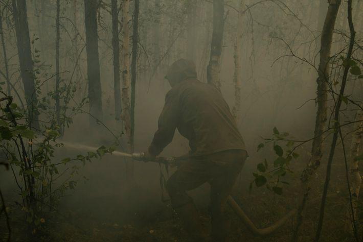 Siberian fires 012