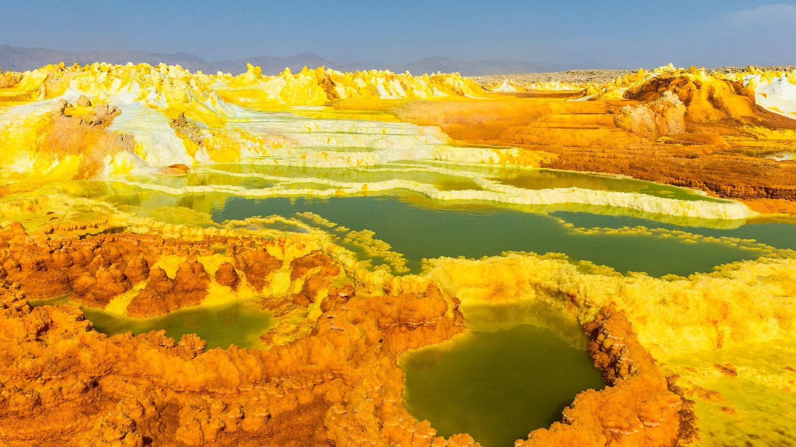 Ethiopia's Danakil Depression is the definition of inhospitable. The sunken volcanic landscape is rife with acidic ...