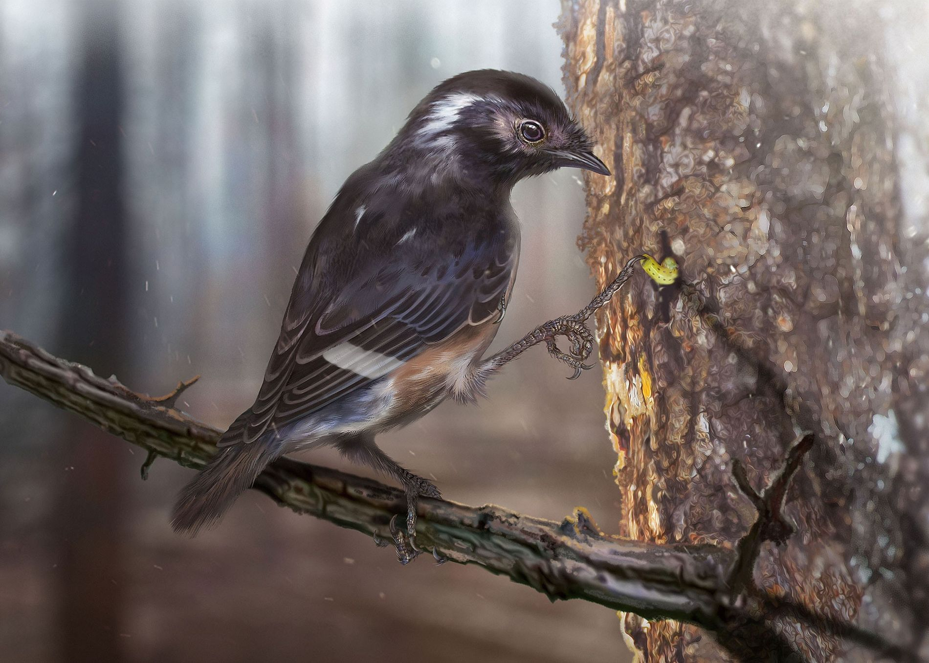 A newfound species of enantiornithine, an extinct group of dino-era birds, has freakishly long third digits ...