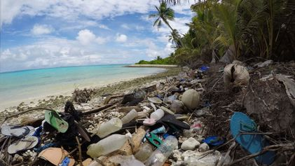 Beach cleanups are missing millions of pieces of plastic