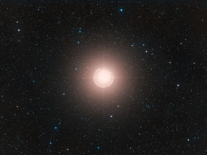 This image of Betelgeuse, one of the brightest stars in the sky, is a color composite ...