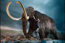 01_booktalk_mammoth