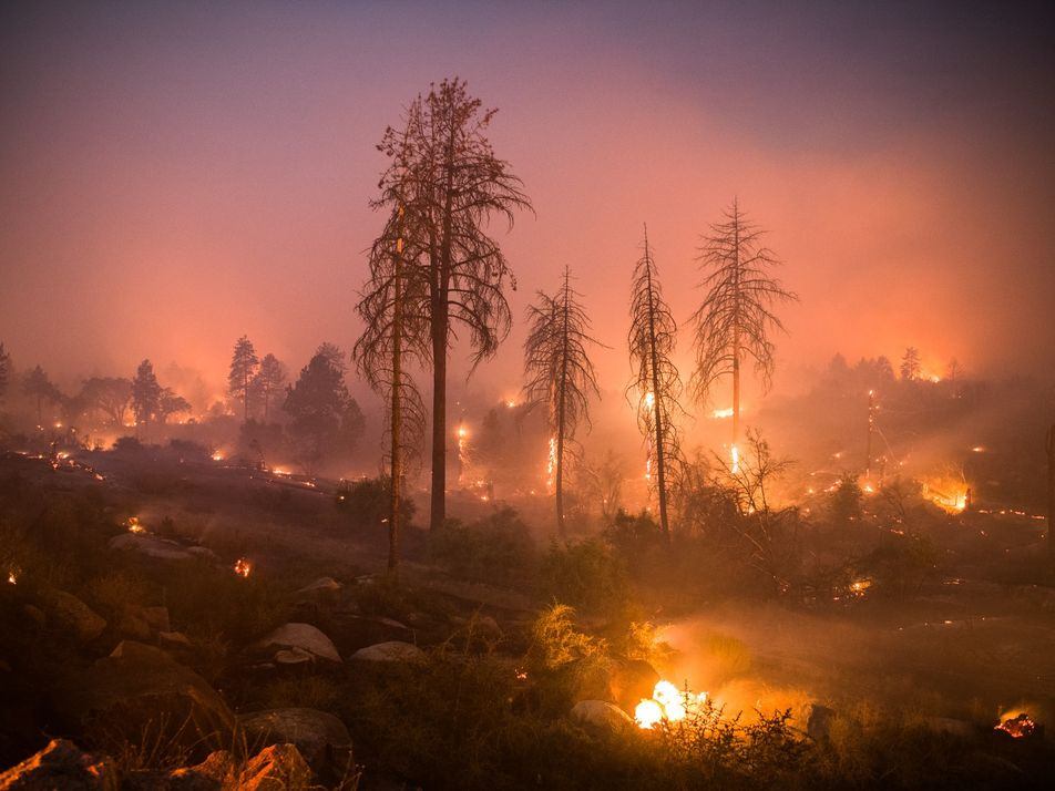 California Fires Keep Burning. What Does It Take to Stop Them?