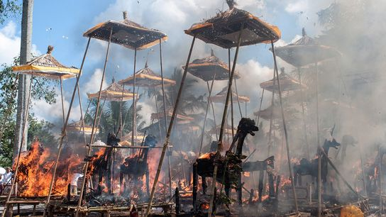 Sarcophagi burn during a traditional Hindu mass cremation event on August 18, 2013, in Bali, Indonesia.