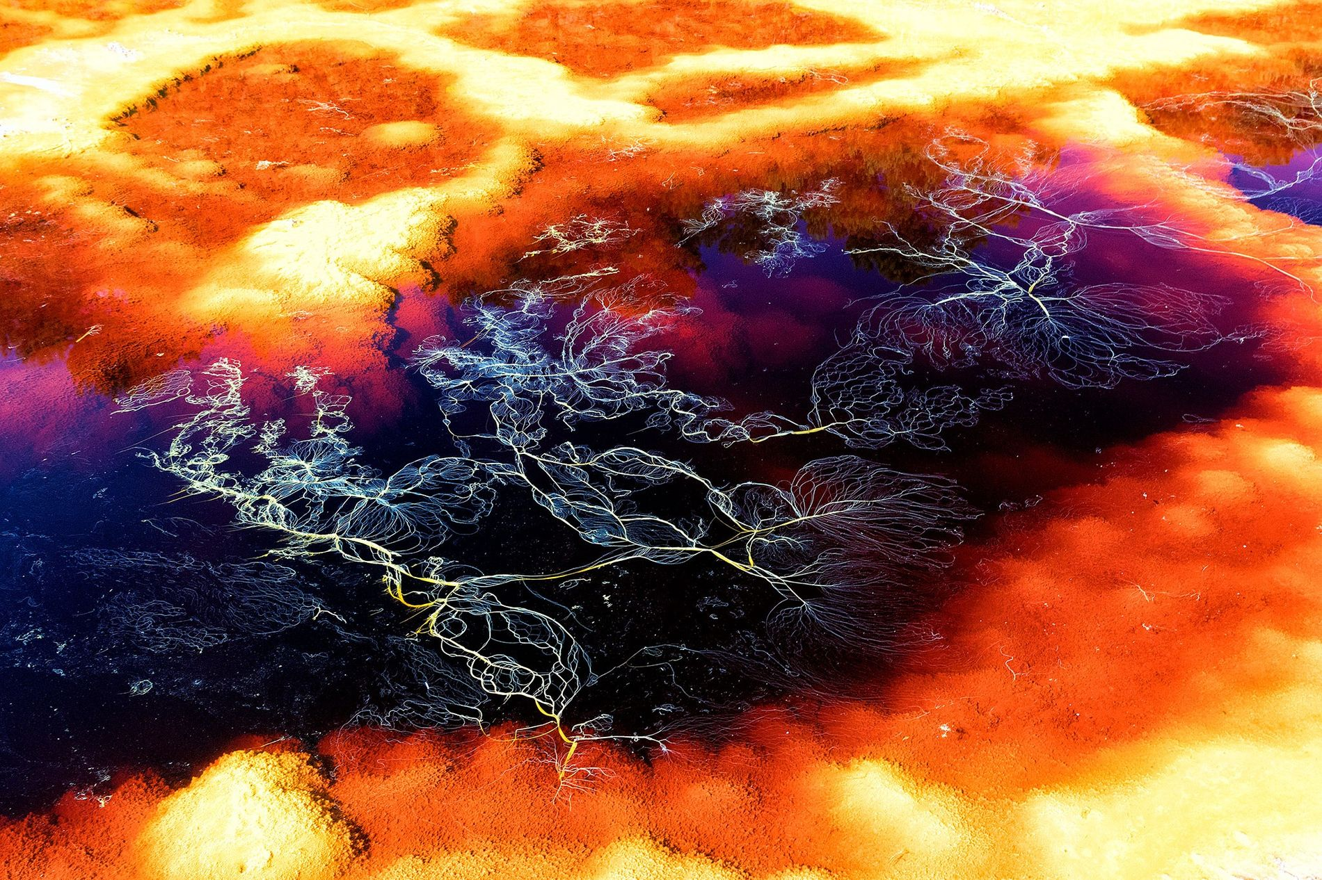 The Mars-like minerals of the Rio Tinto region in Spain have led many scientists to study ...