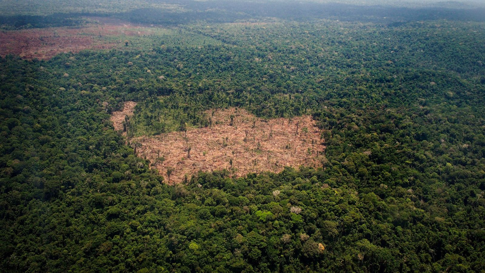 A deforested patch of land splits the Amazon Rain Forest in Brazil, the deadliest country for ...