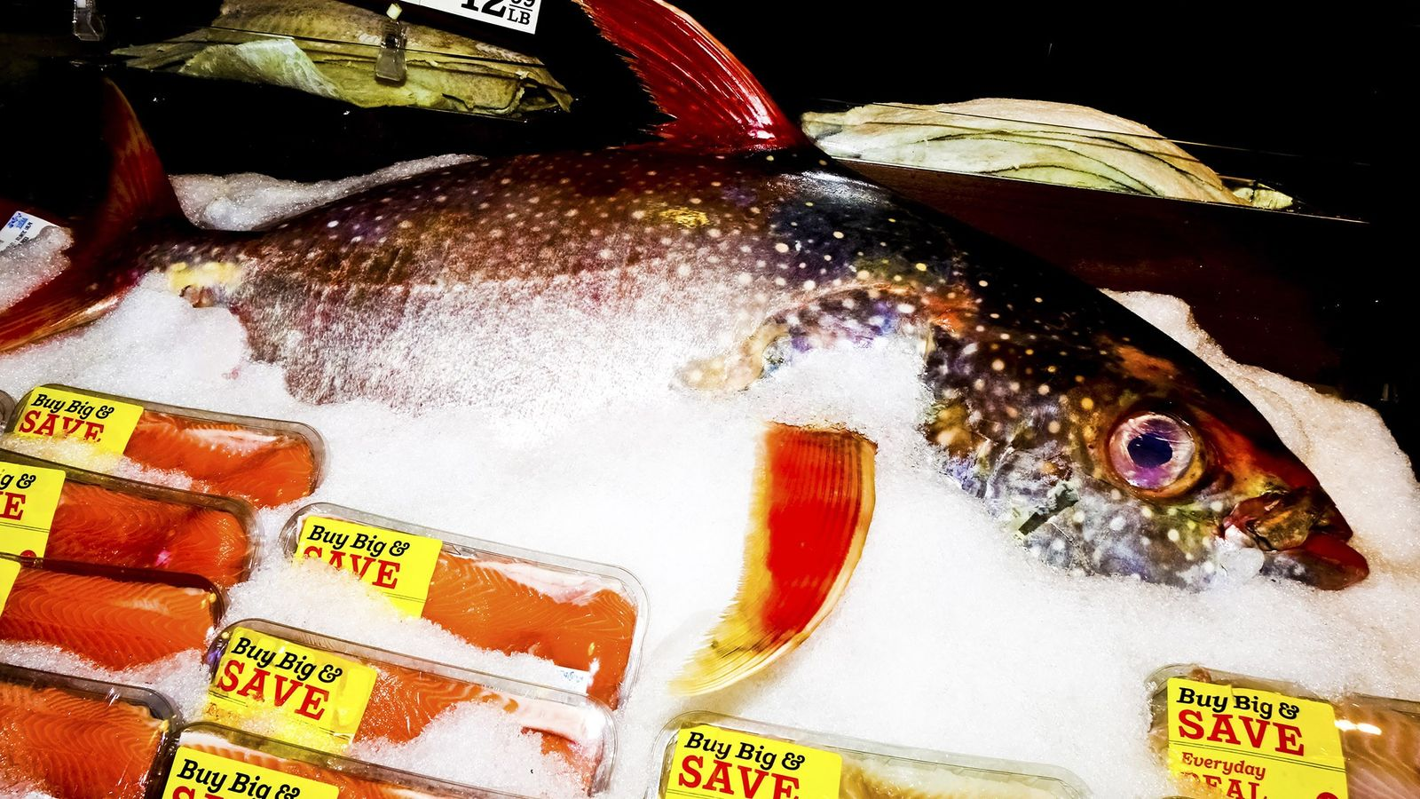 Though markets were one source of mislabeled seafood, fish bought in restaurants were the most likely ...