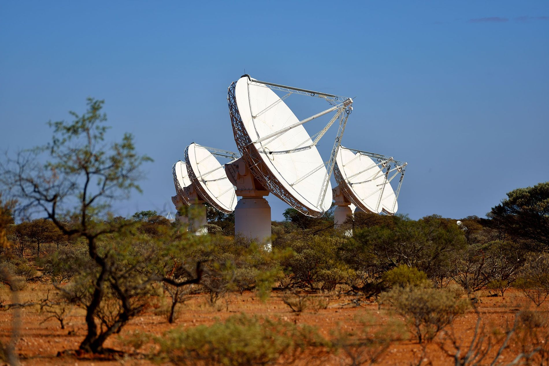 The multiple radio dishes of the Australian Square Kilometre Array Pathfinder, some of which are seen ...