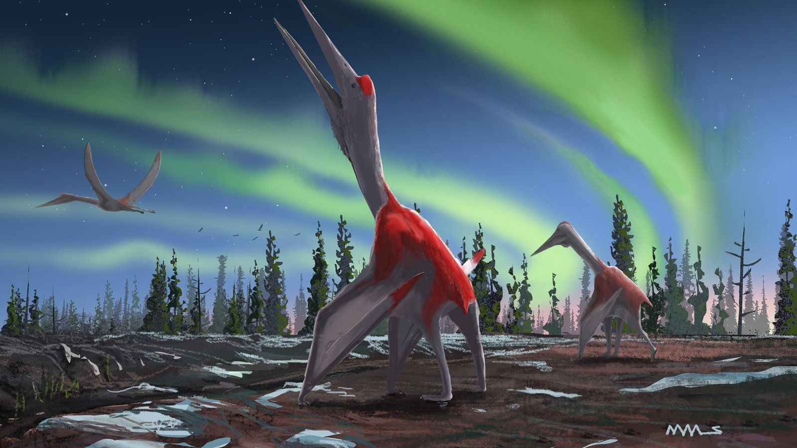 A new study in the Journal of Vertebrate Paleontology describes a new pterosaur called Cryodrakon boreas, ...