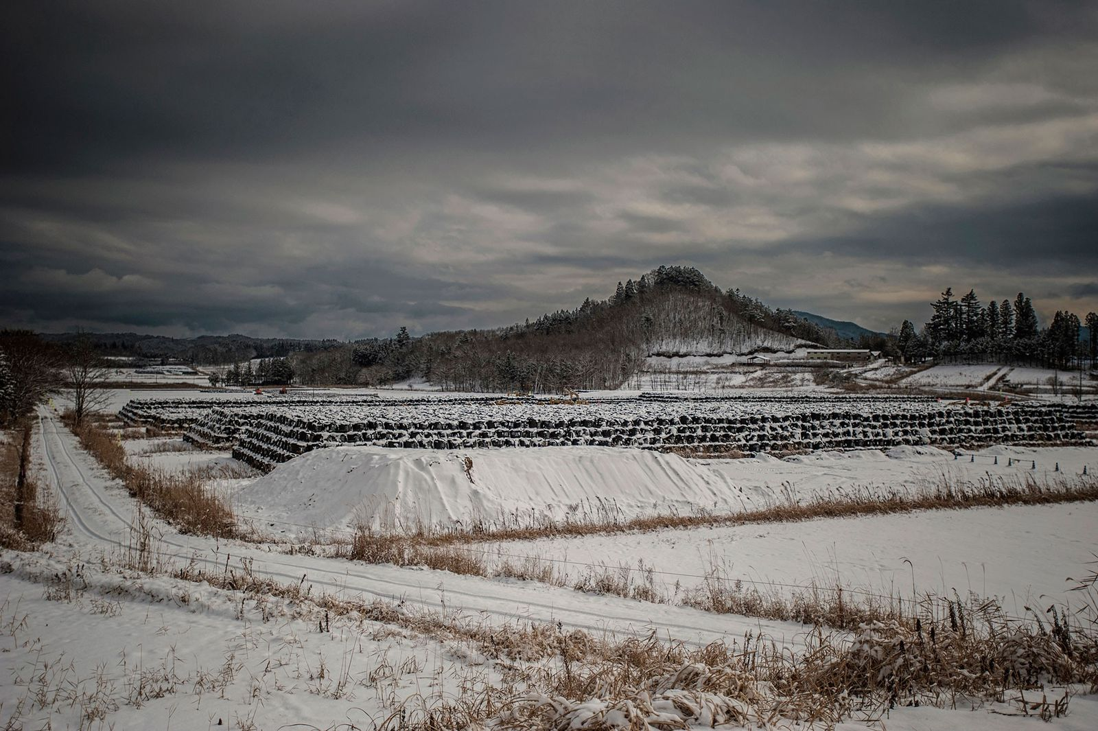 Eerie Photos of Fukushima's Ghost Towns