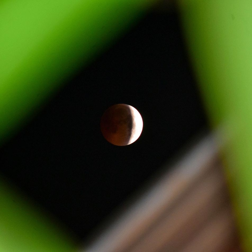 See a lunar eclipse on the Apollo 11 launch anniversary
