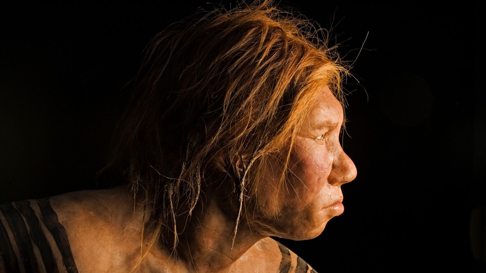 With the discovery of Neanderthal ancestry across African populations, researchers have now found traces of ancient ...