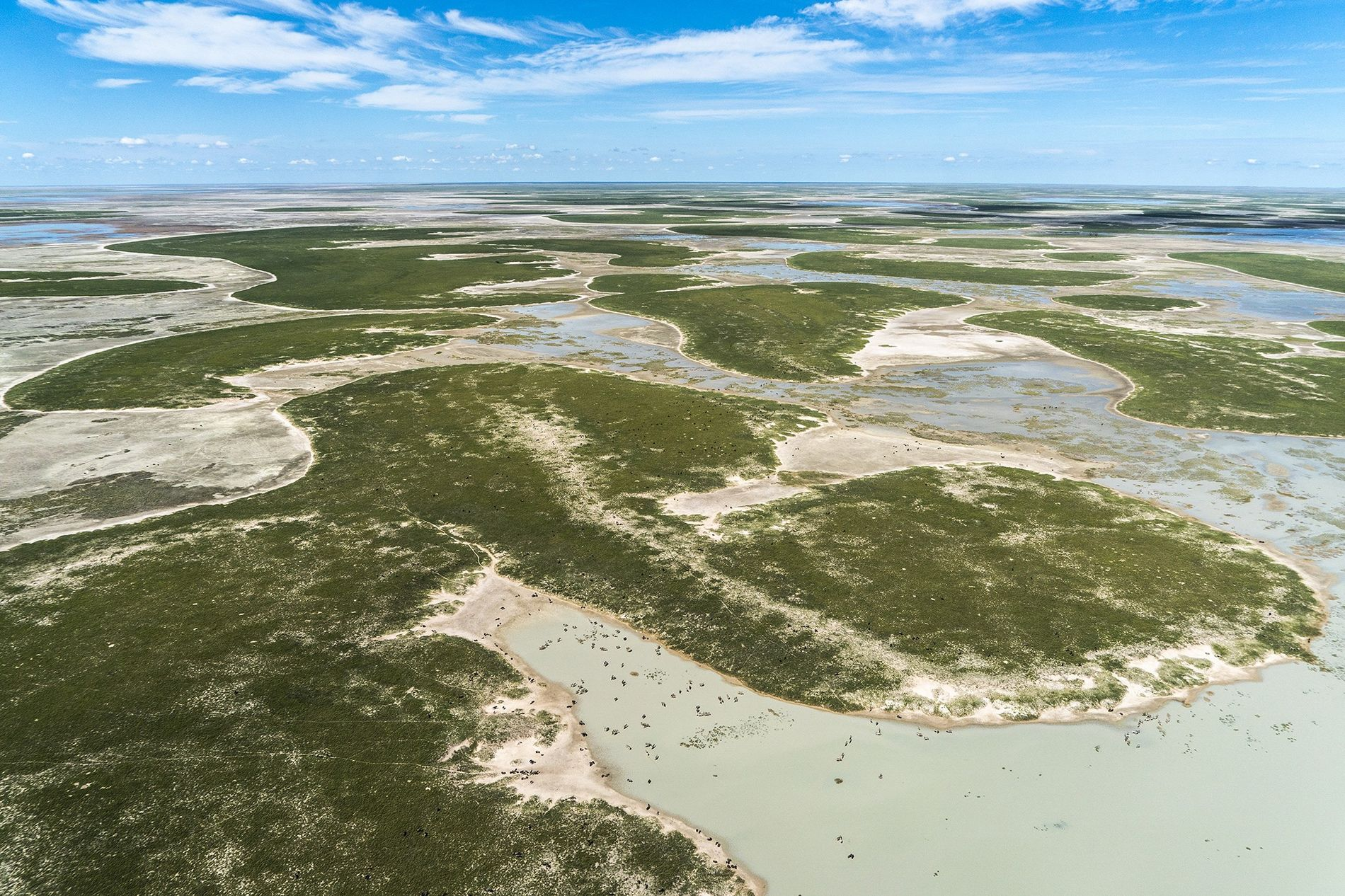 A controversial new study claims that ancient wetlands south of the Zambezi River were the oasis from which all modern humans emerged. Today, the region is one of the world's largest salt flats known as the Makgadikgadi pans.