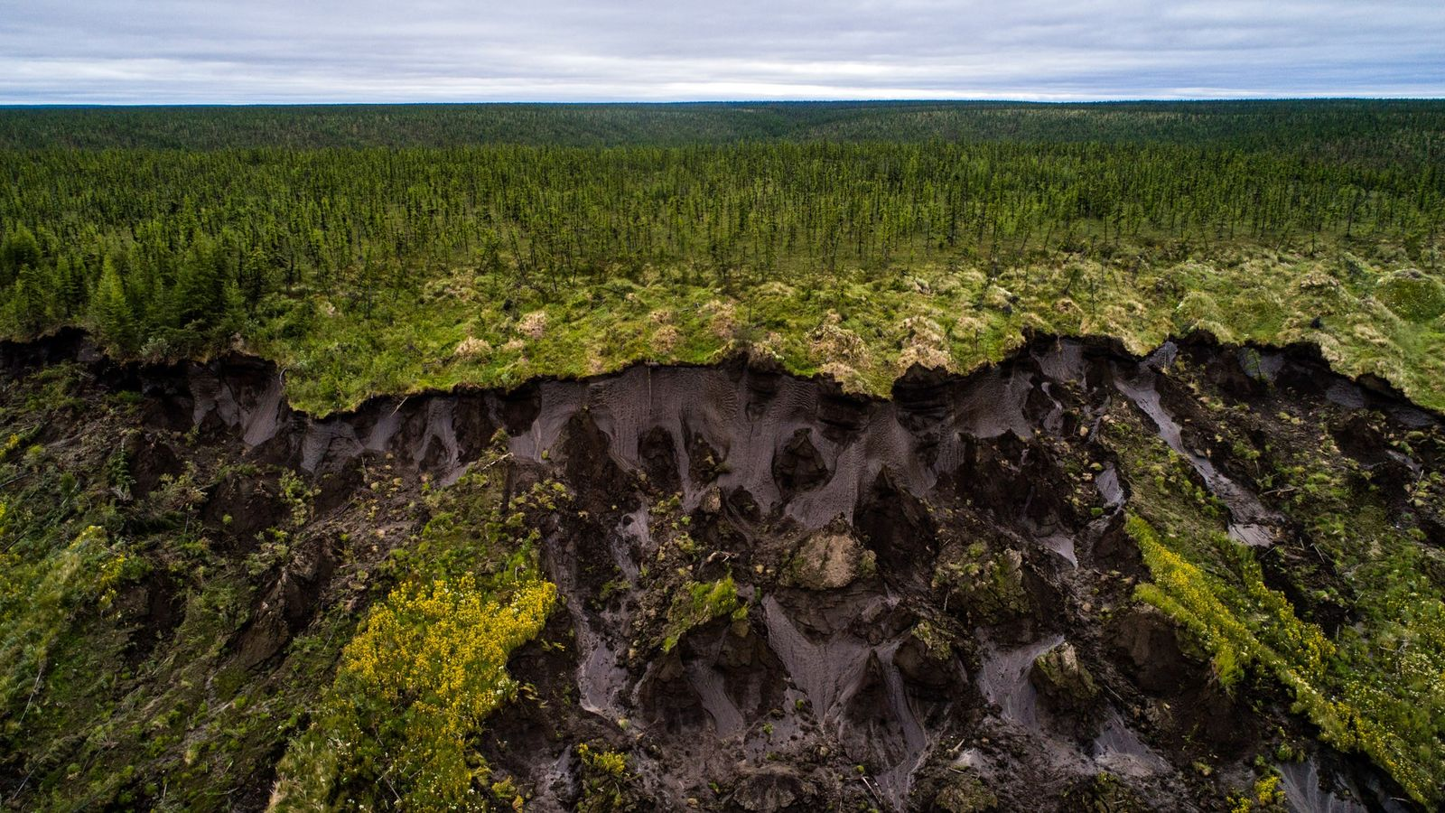 Ground collapses at Duvanny Yar, a permafrost megaslump along the Kolyma River in northern Siberia. New ...