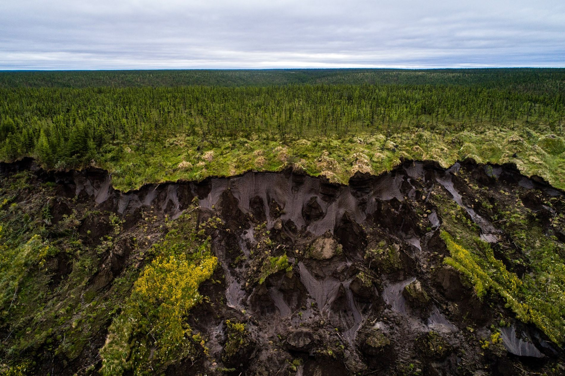 Ground collapses at Duvanny Yar, a permafrost megaslump along the Kolyma River in northern Siberia. New research suggests that some land in Arctic Alaska and Russia may no longer freeze at all. This constantly moving landslide, driven by erosion and sped up by warming temperatures, is an important research site for scientists, who use it to track what happens as carbon-rich land that has been frozen for centuries begins to thaw.
