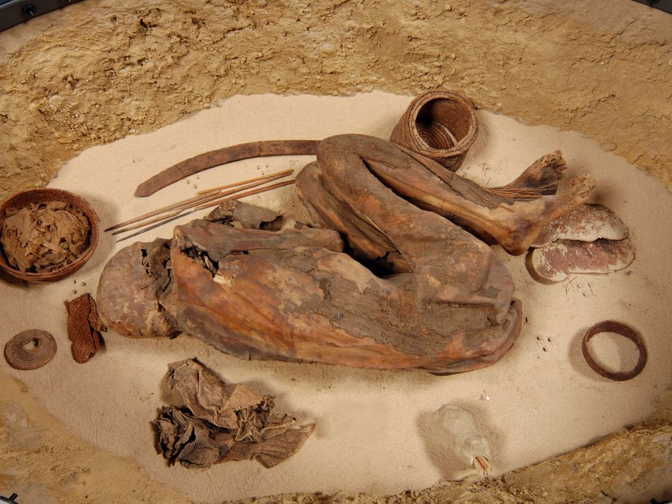 Mummy Yields Earliest Known Egyptian Embalming Recipe