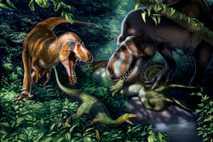 Fossils thought to belong to juvenile Tyrannosaurus rex suggest that the bone-crushing behemoths were sleek, fleet-footed ...